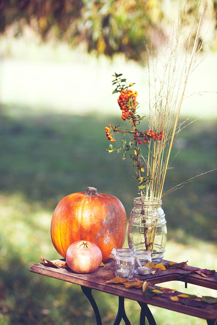 Inspiration-automne©monsieurplusmadame