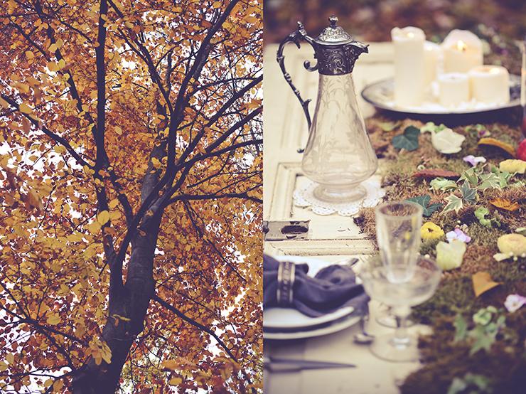 ce-jour-la-photographie-mariage-automne-fall-wedding-008