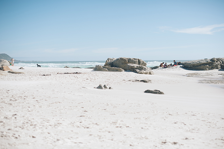 Thomas and Dag Noordhoek Beach wedding by dna photographers_-56