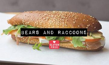 bearsandraccoons